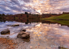 Peter Youngs - Tarn Hows Lake District